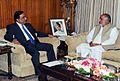 MMA with President Zardari.jpg