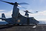 MV-22 lands on the USS America 141005-M-HT768-057.jpg