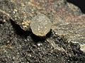 Macle de diamants (République d'Afrique du Sud).JPG