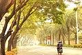 Mahindracity IT park Chennai.jpg