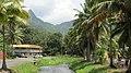 Main Rd, Avarua, Rarotonga - panoramio (2).jpg