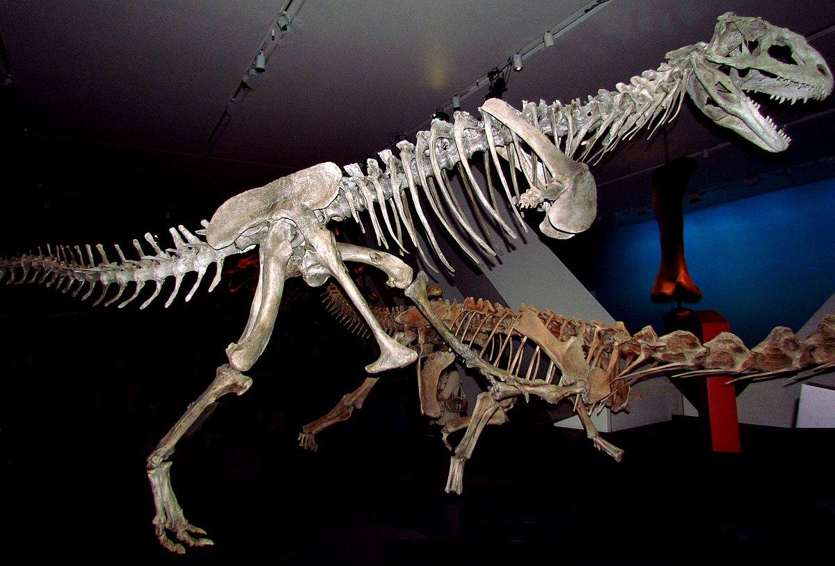 Resultado de imagen de majungasaurus