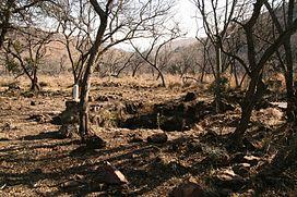 Datování v Sunnyside Pretoria