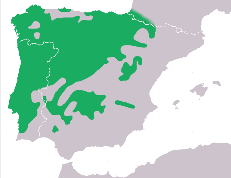 File:Mapa Hyla molleri.png