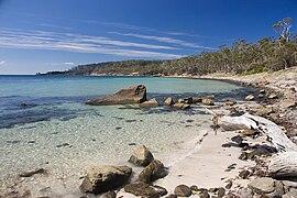 Maria Island Beach