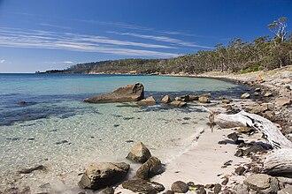 Maria Island National Park - Maria Island Beach