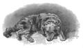 Maria Konopnicka - Szczęśliwy światek (1895) page 33a.png