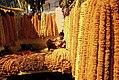 Marigold chaplets (2324946795).jpg