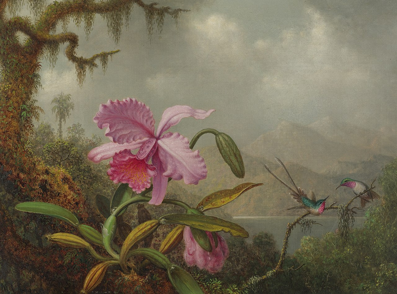 Martin Johnson Heade, Orchids and Hummingbirds, signed M.J. Heade, l.l. Oil on canvas, 1875-90.jpg