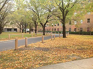 La Trobe University - Martin Building in autumn.