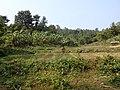 Mawlaik, Myanmar (Burma) - panoramio (11).jpg
