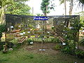Medicinal herbs garden hospital.JPG