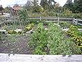 Meijer Gardens October 2014 31 (Michigan's Farm Garden).jpg