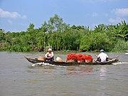 Rambutan-Transport im Mekong-Delta