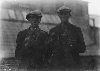 Men holding fox cubs