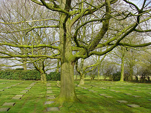 Menen - Image: Menen duits kerkhof
