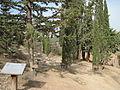 Metzudat Koach - garden in memorial of the fighters1.jpg