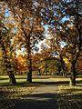 Minnehaha Park in autumn 32.jpg