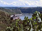 Mittelrhein Burg Katz.jpg