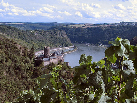 Rhine valley in summer at Lorelei. Mittelrhein Burg Katz.jpg