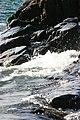 More Water (1871532467).jpg