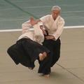Moriteru Ueshiba.png