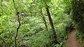 Mount Takao - Trail 4 (9406719153).jpg