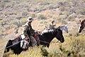 Mountain Warfare Training Center teaches advanced horsemanship 130905-M-AM802-2406.jpg