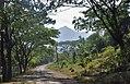 Mt Arayat from Magalang Pampanga.jpg