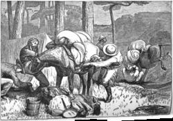 Plowing hugh hunter