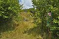 Národní přírodní památka Růžičkův lom, Čelechovice na Hané, okres Prostějov (11).jpg