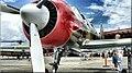 N767RG Aerostar Yak-52W Col. R. W. Gage (4189978574).jpg