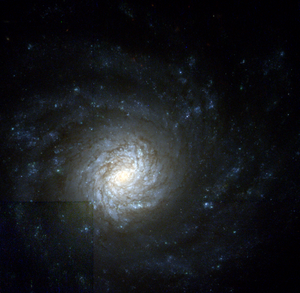 NGC 4041 - NGC 4041 by the Hubble Space Telescope