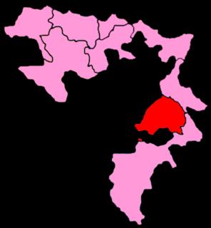 8th Electoral Unit of Republika Srpska (NSRS)