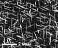 Nanowires on si substrate.jpg