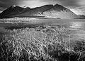 Nares Lake near Carcross, Yukon (10604770453).jpg