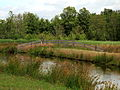 Nationaal Park De Alde Feanen. Locatie, It Wikelslân 012.JPG
