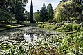 National Botanic Gardens In Glasnevin (Dublin) - panoramio (15).jpg