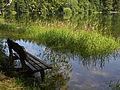 Naturpark Ötscher-Tormäuer - Bank beim Erlauf-Stausee.jpg