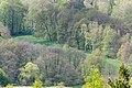 Naturpark Thüringer Wald.Blick vom Reinhardsberg.14.ajb.jpg