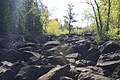 Need a ROCK^ This is rapids, when the water is high. - panoramio.jpg