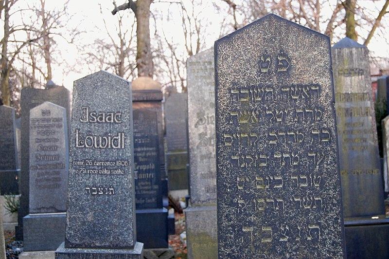 File:New Jewish cemetery in Plzeň, 2012, 03.JPG