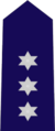 New South Wales State Emergency Service insignia - Unit Controller.png