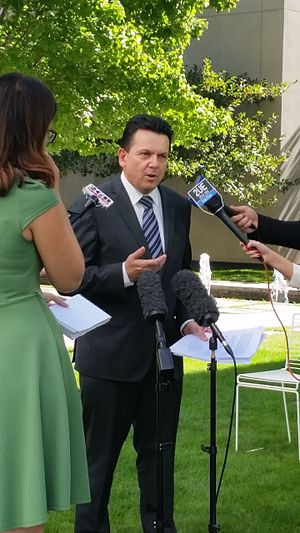 Nick Xenophon - Xenophon speaks to the media in a courtyard of Parliament House, Canberra.