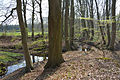 Niedersachsen, Heeßel, Landschaftsschutzgebiet NIK 2720.JPG