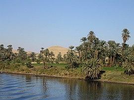 Ribera del río Nilo, en Egipto