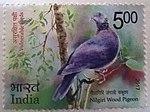 Niligiri Wood Pigeon on a postage stamp.jpg