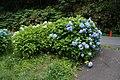 Noboribetsuonsencho, Noboribetsu, Hokkaido Prefecture 059-0551, Japan - panoramio (1).jpg
