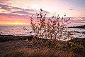 North Shore Morning, Minnesota (13965745877).jpg