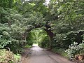 Nursery Lane Bridge, Sprotbrough - geograph.org.uk - 506447.jpg